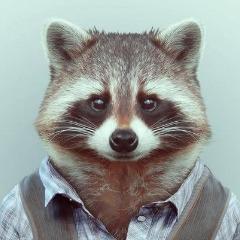 Player ROHLS3N avatar