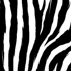 Player BOT_ZEBRA avatar