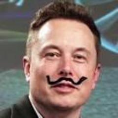 Player ElonMuskular avatar