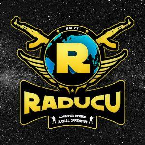 Player Radu31 avatar