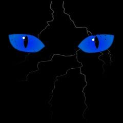 Avatar MAiKEL-