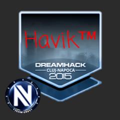 Avatar havik7