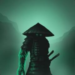 Mir-avatar