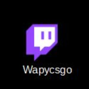 Player twitchwapy avatar