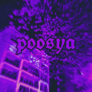 Player Poosya1 avatar