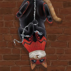 Player Cat_Spider avatar