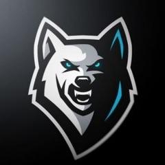 Player Anvo avatar