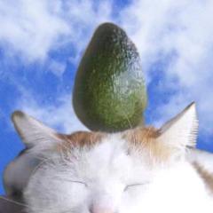 Avatar Avocado-
