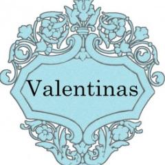 Avatar Valentinas17