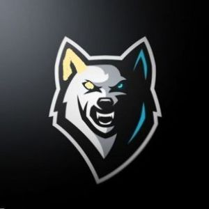 Player NAZ1KKKKK avatar