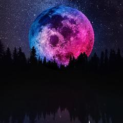 Player BOMGIXA avatar