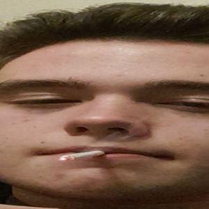 Player Becikk avatar