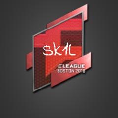 Player Sk1001 avatar