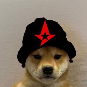 Player Mast3rdoG avatar