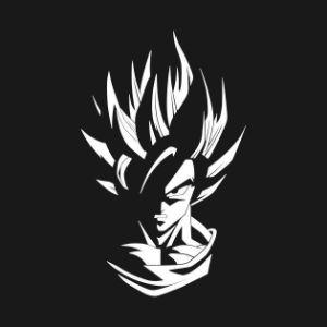 Player N1v3r4 avatar