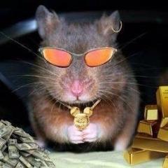 Player RatiexCS avatar