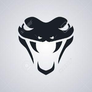 Player SnaKe272 avatar