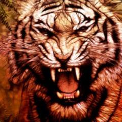 Avatar Xx_Tiger_xX