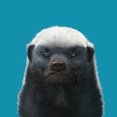 Player MaRekTT avatar