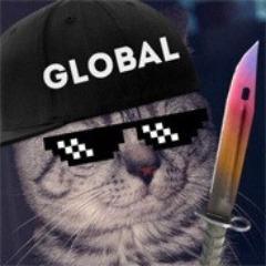 Player Zoob1k avatar