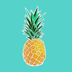 Avatar Ananas021