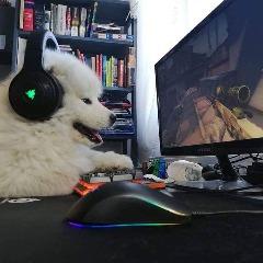 Avatar worshondx