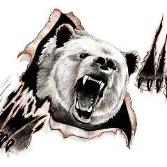 Avatar bearofficia1