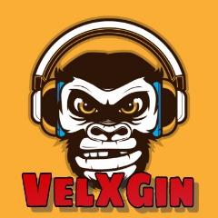 Avatar VelXGin
