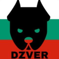 DZVER